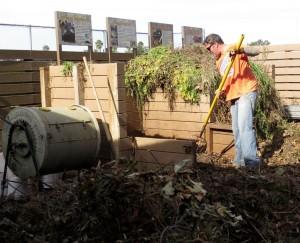 Todd_compost