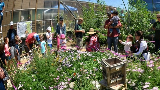 The Environmental Nature Center in Newport Beach hosts its 10th Annual Spring Faire and Butterfly House Opening.