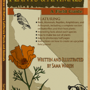 Samas Book