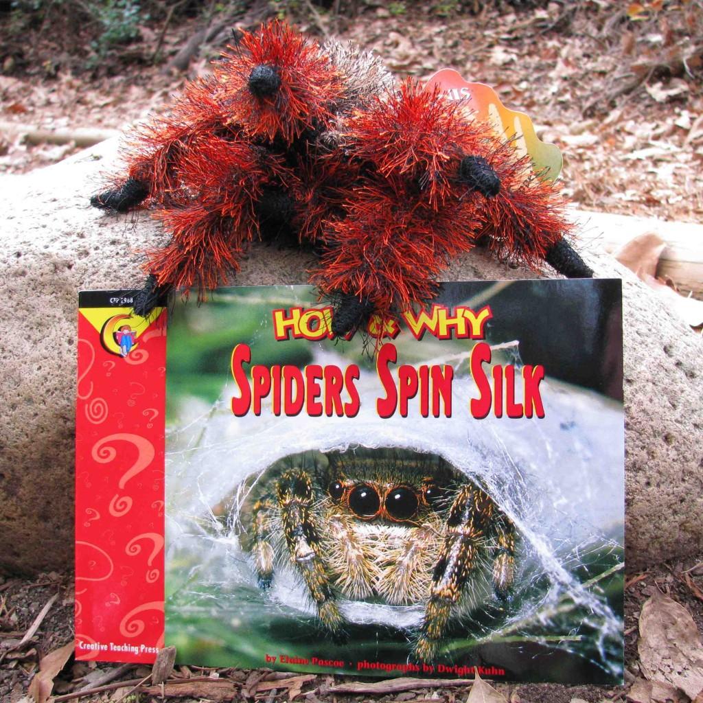 spider combo
