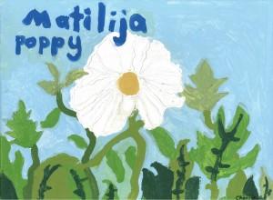 Matilija Poppy by Charlie Adams, Age 8 - 10, 1st place