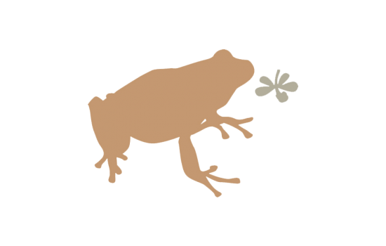 frog-supporter