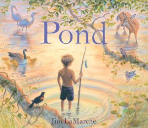 pond-9781481447355_hr