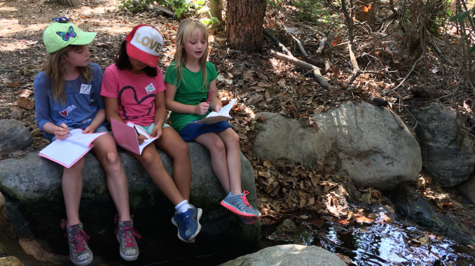 Journaling by the stream