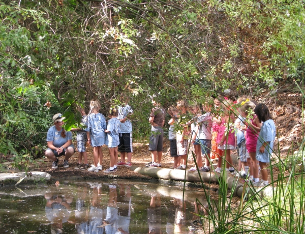 Summer Nature Camp Scholarships now being accepted!