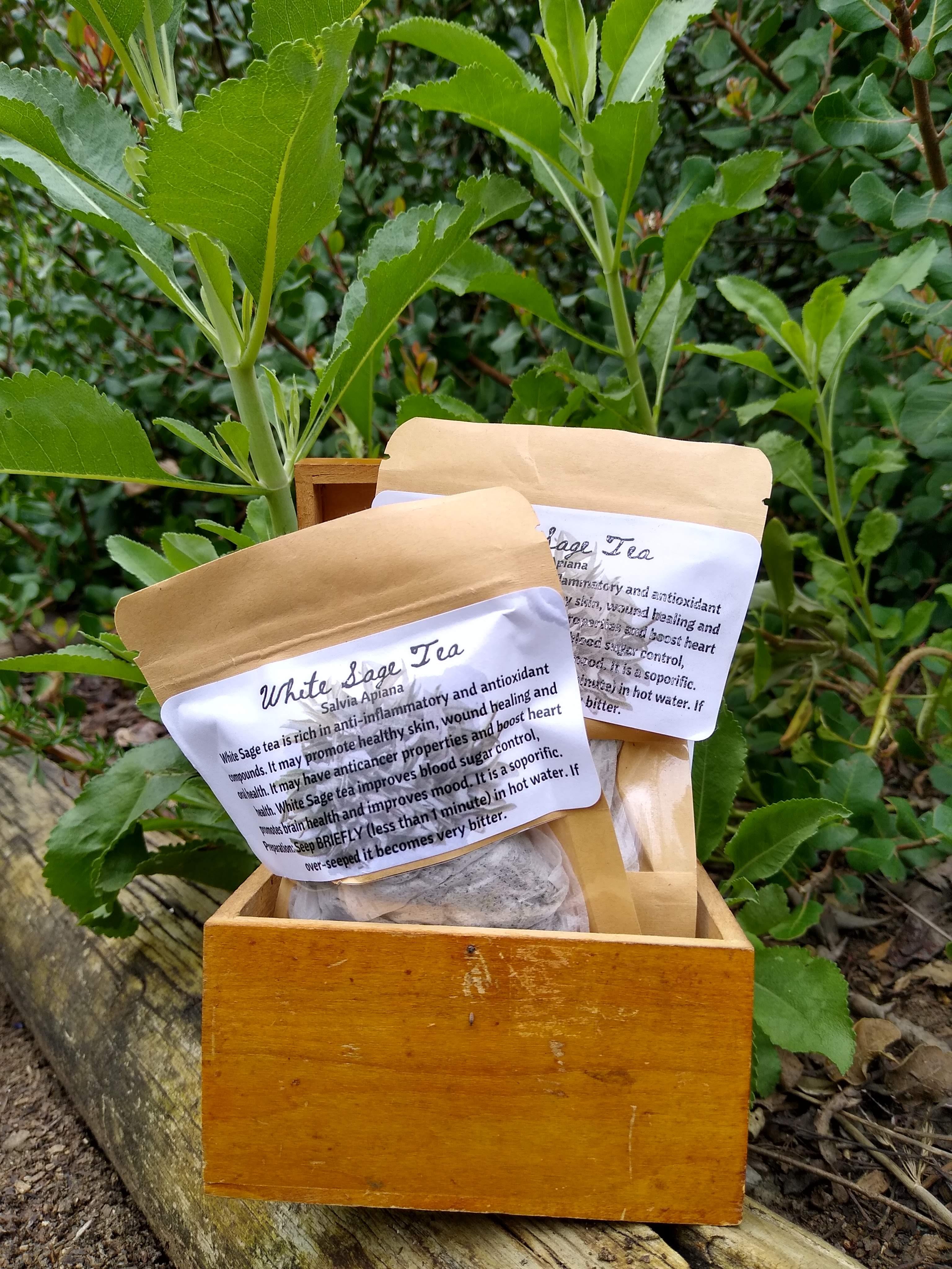 Salvia Apiana tea