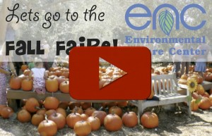 Watch our short Fall Faire video!