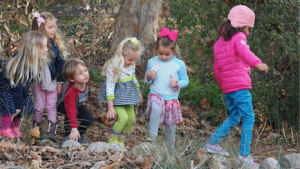 little-naturalists_small