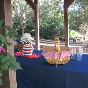 picnic_small