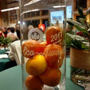 OC USGBC Award_Most Sustainable NGO 2017