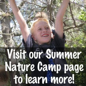 Visit our Summer Nature Camp page to learn more