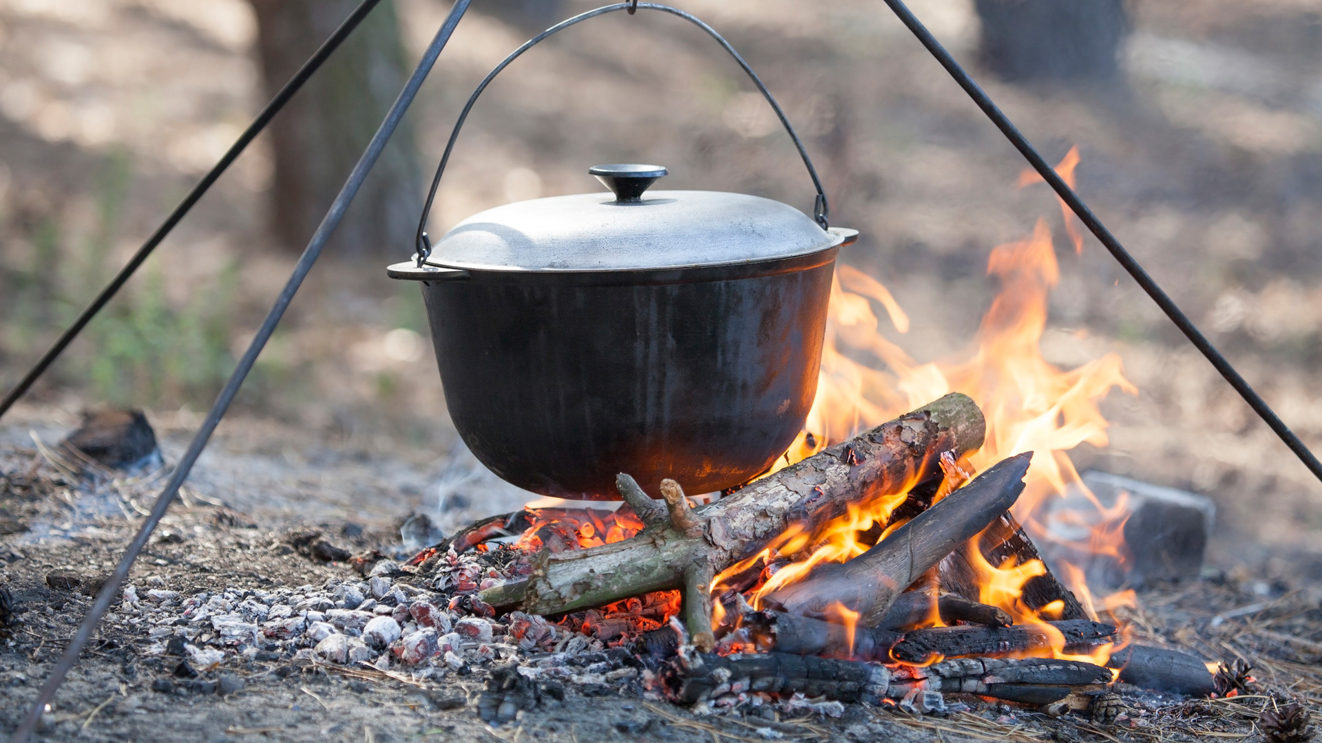Easy Campfire Recipes That Kids Love To Make | Environmental Nature Center