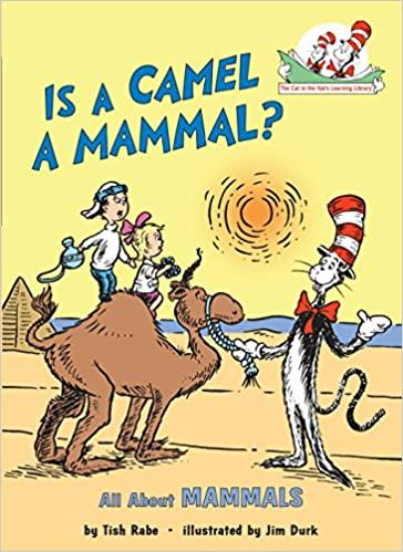 Is A Camel A Mammal