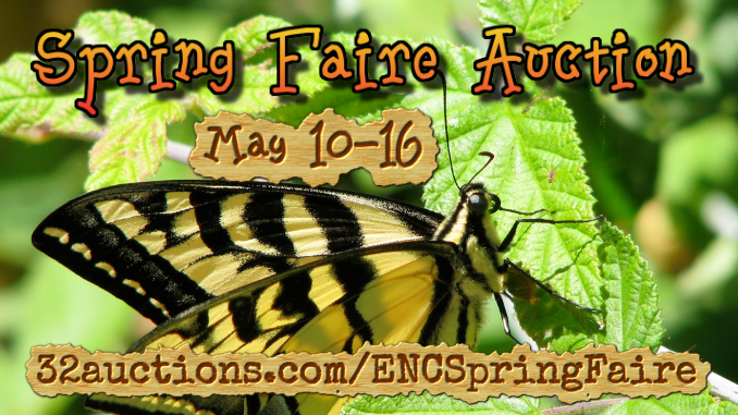 2021 Spring Faire Auction_square_butterfly_front page